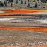 Von Algen gefärbtes Land.