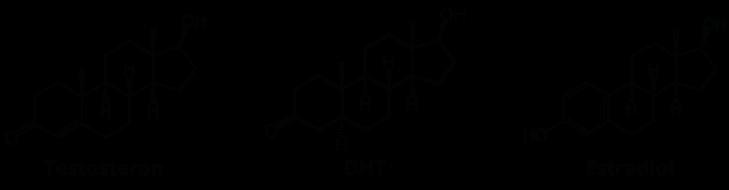 Testosteron, DHT, Estradiol.